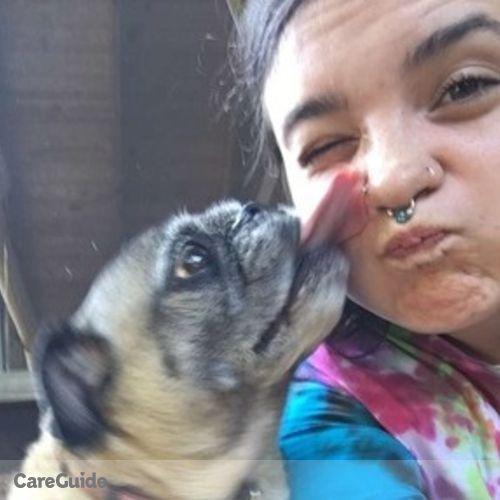 Pet Care Provider Sandra N's Profile Picture