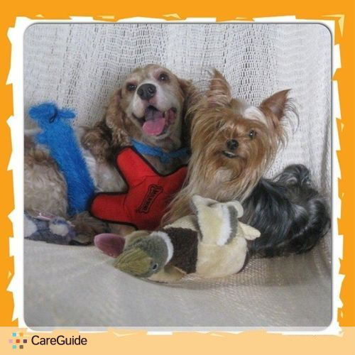 Pet Care Provider Jo-Ann Gonzalez's Profile Picture