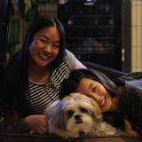 Seeking Irvine Pet Sitting Professional, California Jobs