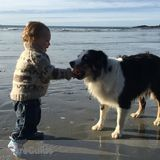 Family, Pet Care in Tofino