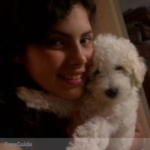 Pet Care Provider Dhianny Melo's Profile Picture