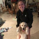 Qualified Dog walker & Dog sitter in Miami Beach
