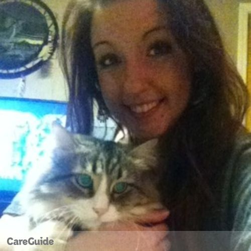 Housekeeper Provider Amanda P's Profile Picture