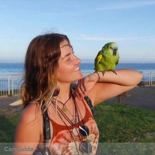 Pet Care Provider Molly Mandala's Profile Picture