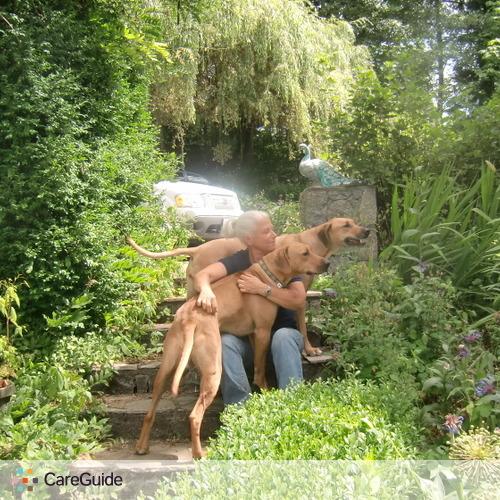 Pet Care Provider Lelia Nutt's Profile Picture