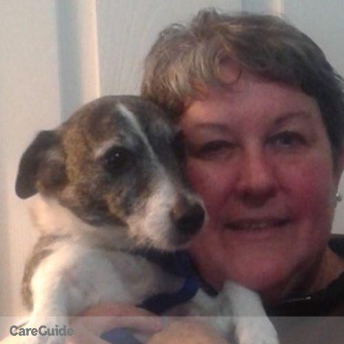 Pet Care Provider Allison Schepers's Profile Picture