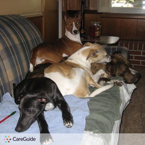 Pet Care Provider Tricia H's Profile Picture