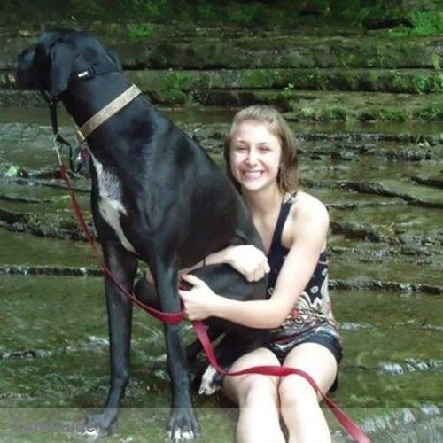 Pet Care Provider Kristina Gambill's Profile Picture