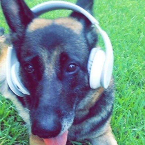 Pet Care Provider Melanie A's Profile Picture