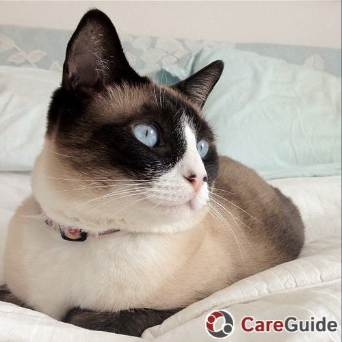 Pet Care Provider Jessica K's Profile Picture
