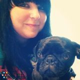 Experienced house and pet sitter!