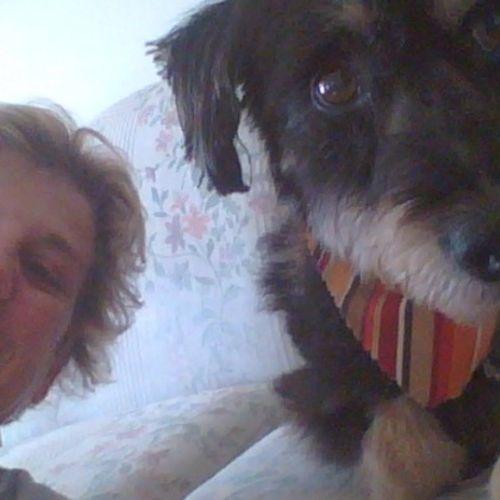 Pet Care Provider Kim S Gallery Image 1