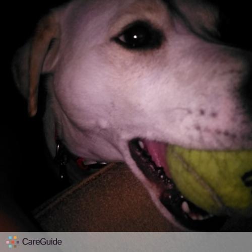 Pet Care Provider Jody Bingham's Profile Picture
