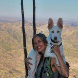 Dog Walker, Pet Sitter in Telluride