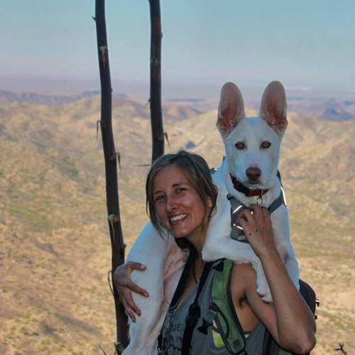 Pet Care Provider Sierra Hawksley's Profile Picture