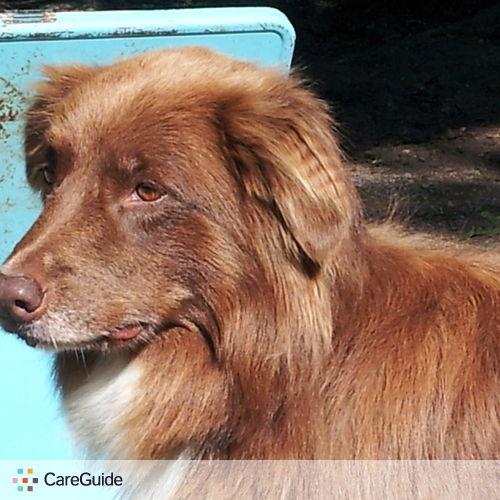 Pet Care Provider Lynn Preston's Profile Picture