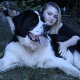 Available For Pet Walking, Exercise Managing and In Home Pet Sitting