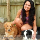 Dog Walker, Pet Sitter, Kennel in Chesterfield