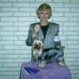Seasoned professional pet sitter/house sitter