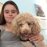 Dog Walker, Pet Sitter in Edison