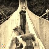 Dog Walker in Vancouver