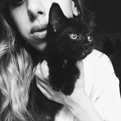 Pet Care Provider Shereen M's Profile Picture