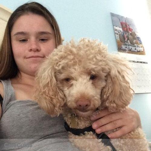 Pet Care Provider Julie Primiano's Profile Picture