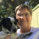 Capable, affectionate Pet Care Provider in Stockton