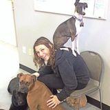 Highly experienced animal caretaker