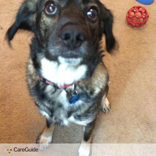 Pet Care Job Nicole K's Profile Picture
