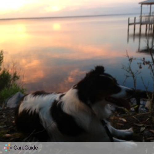 Pet Care Provider Tracy B's Profile Picture