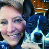 Groton, Connecticut Veterinary Technician/ Petsitter