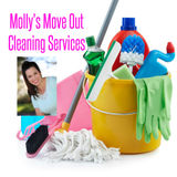 Housekeeper, House Sitter in Lakeland