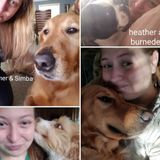 Available: pet sitter with over 5 years of experience