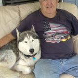 I'm a senior person with experience in pets used to work as kennel assistance in a Vet clinic in lady lake
