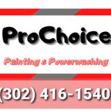 ProChoice Painting and PowerWashing, LLC B