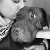 Best Kept Friend Pet Care
