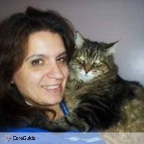 Pet Care Provider Cindi ManeHerrera's Profile Picture
