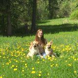 Trustworthy Animal Caregiver Available Immediately
