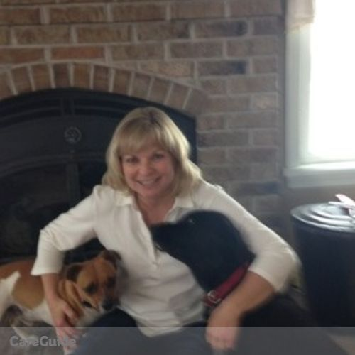 Pet Care Provider Lisa Herrick's Profile Picture