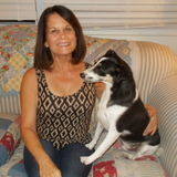 Very Loving and Reliable Pet Sitter - Available Immediately.