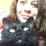 Short term pet sitter needed for sweet 13 year old cat!