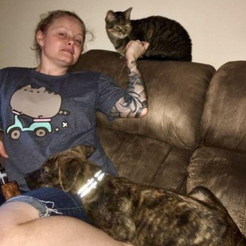 Pet Care Provider Krysta Garavuso Gallery Image 2