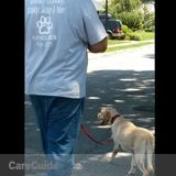 Dog Walker, Pet Sitter, Kennel in Yaphank