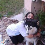 Dog Walker, Pet Sitter in Miami Beach
