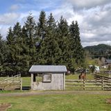 Horse Farm Sitter Needed in Woods Creek/Monroe, WA