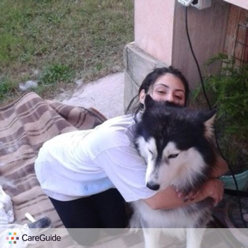 Pet Care Provider Michele Zara's Profile Picture