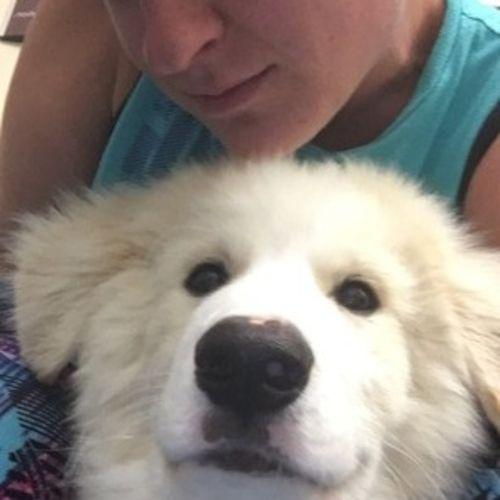 Pet Care Provider Christine Linn Gallery Image 1