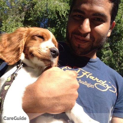Pet Care Provider Kayan Hashemi's Profile Picture