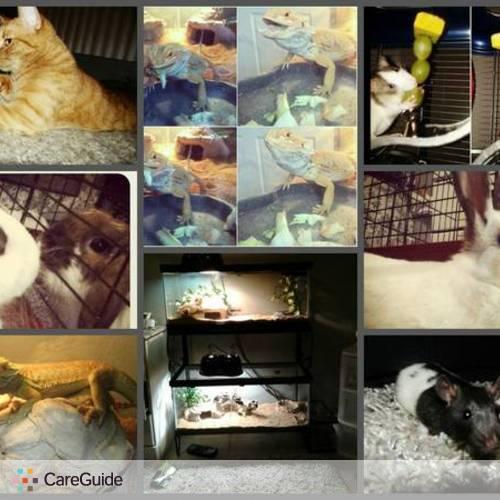 Pet Care Provider Veronica Madl's Profile Picture